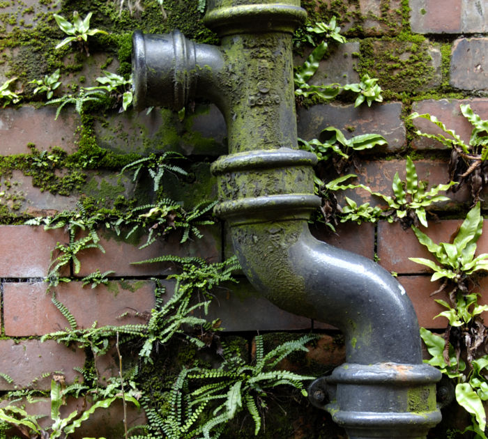 Damp-from-soil-pipe