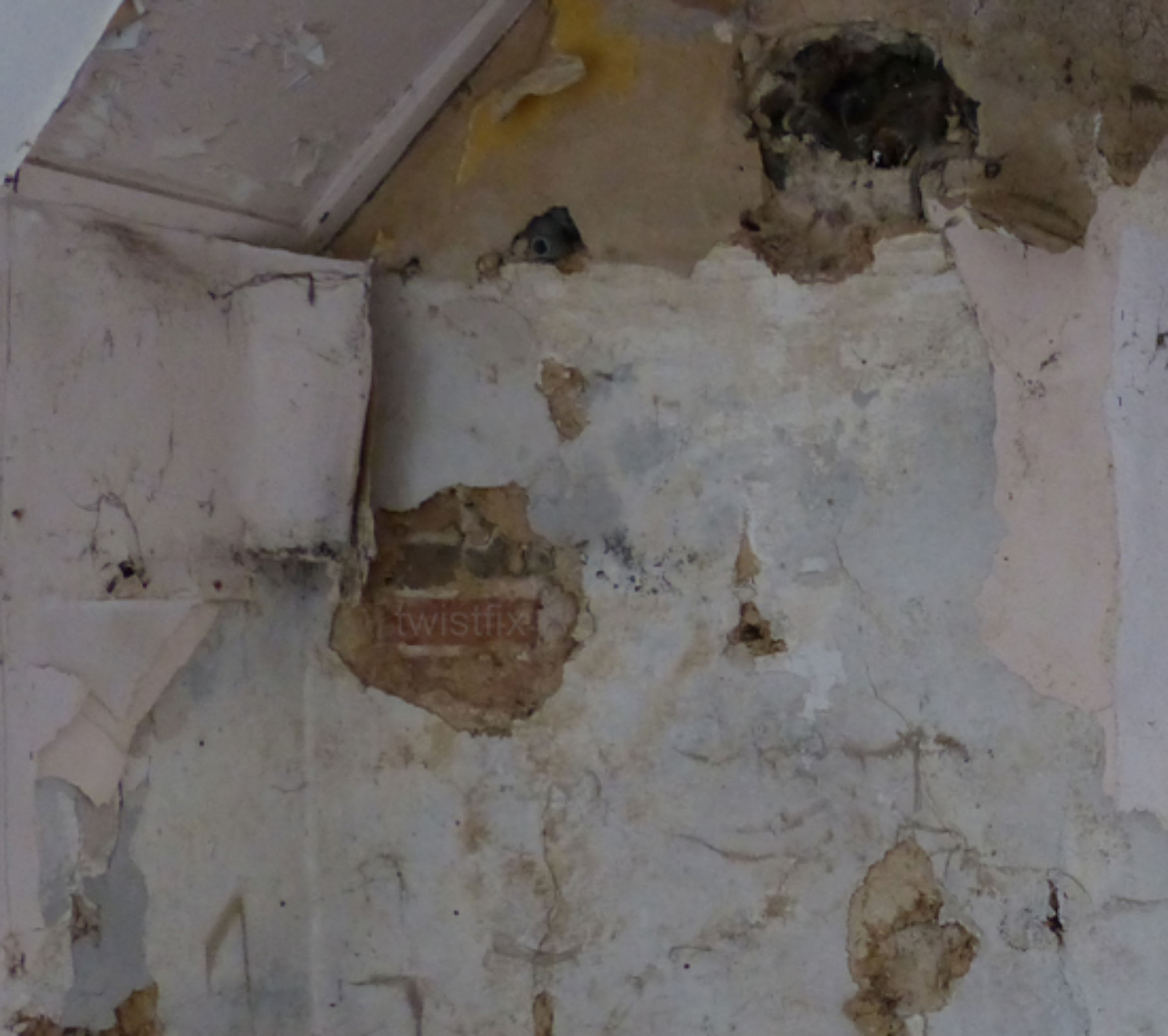 penetrating damp solid wall